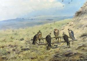 Six Falcons on Cadge