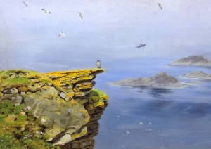 Peregrine on Cliffs